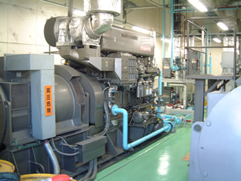 Cogeneration equipment