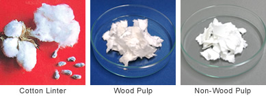 Cotton Linter, Wood Pulp, Non-wood Pulp